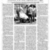 20000812_ElPunt_ReflexionsEstiuTragic_PM.pdf